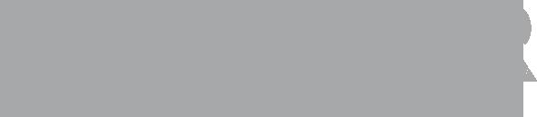 megacar_logo_grigio